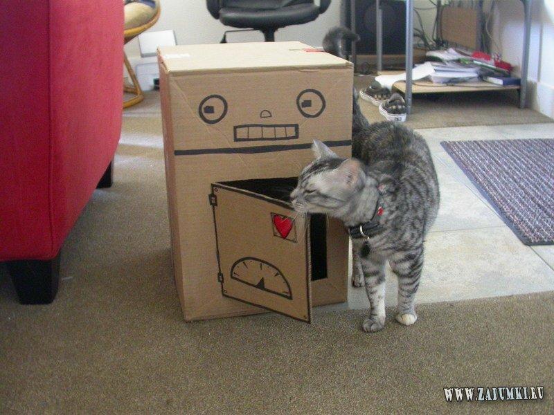 Как сделать игрушку для котенка из коробок